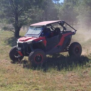 2015 Polaris RZR xp1000