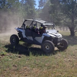 Polaris RZR 2019 4 Seater
